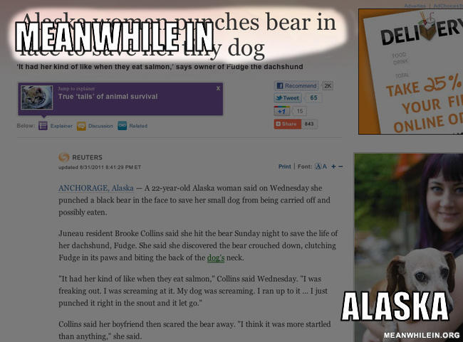 - Meanwhileches bear in dog... huh?