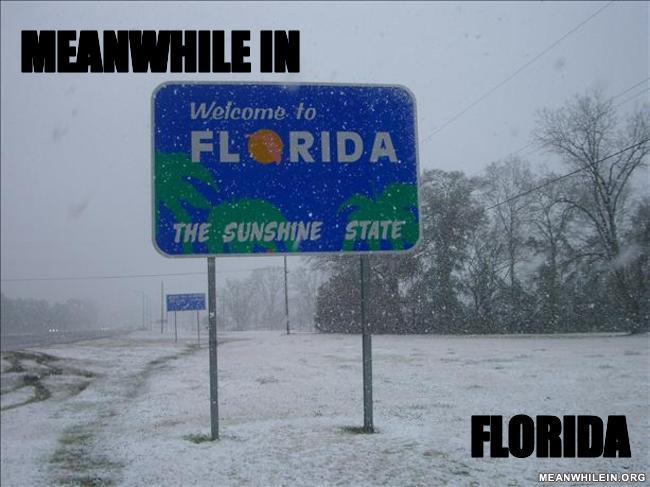 Meanwhile-in-florida-1fcaab