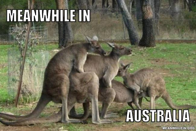 Meanwhile-in-australia-593ade