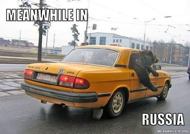- in russia, bear ride taxi lol xD